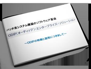 odip_booklet